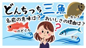 どんちっち三魚の「どんちっち」ってどういう意味なの?おいしさの理由とは!?