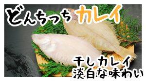 干しカレイの生産量の日本一!淡白な味わいにうま味があるカレイをご賞味あれ!