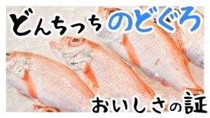 どんちっちのどぐろはおいしさの証!うまいのどぐろを食べたい人は浜田産!