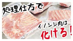弥栄町獣肉加工処理施設のイノシシ肉がうまい!処理でイノシシ肉は化ける!